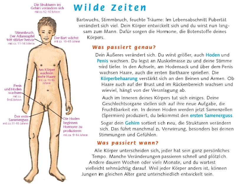 profamilia.de: Körperliche Veränderungen